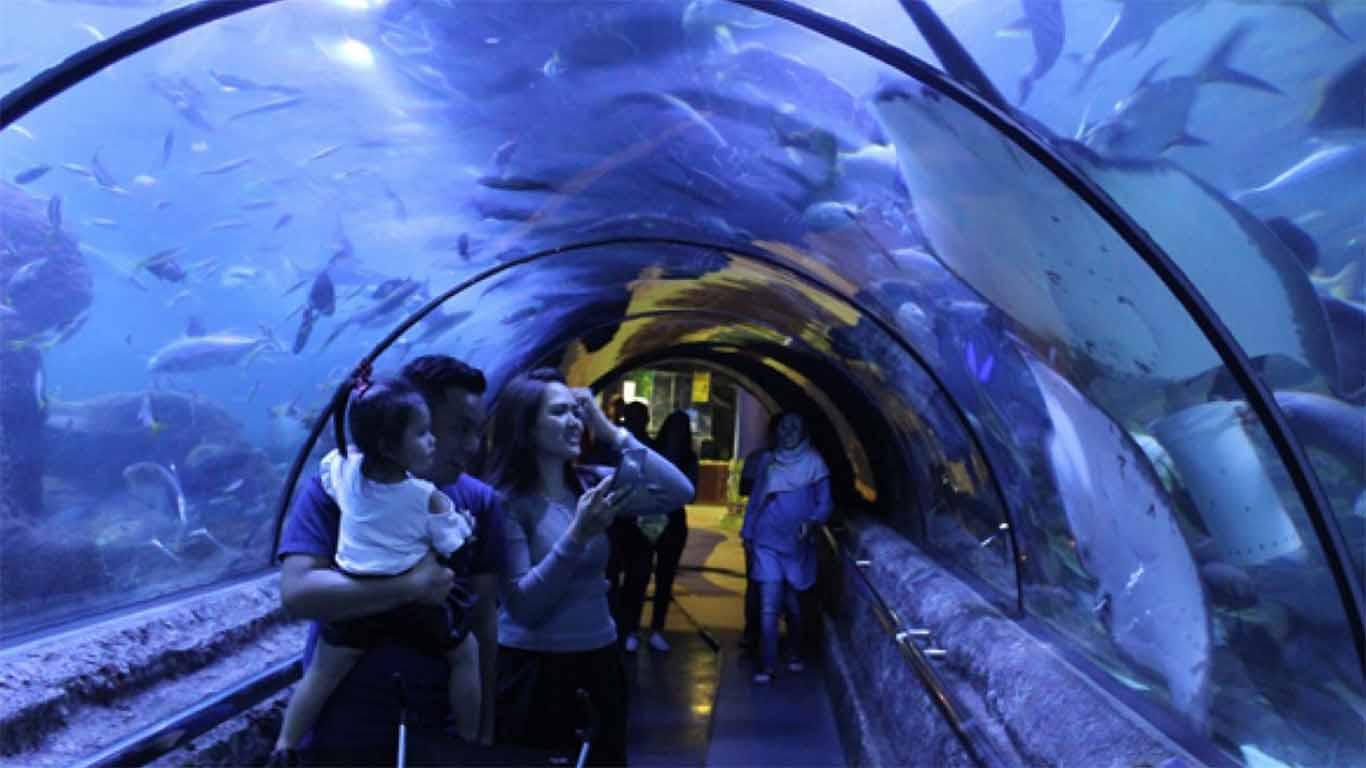 terowongan bawah air seaworld