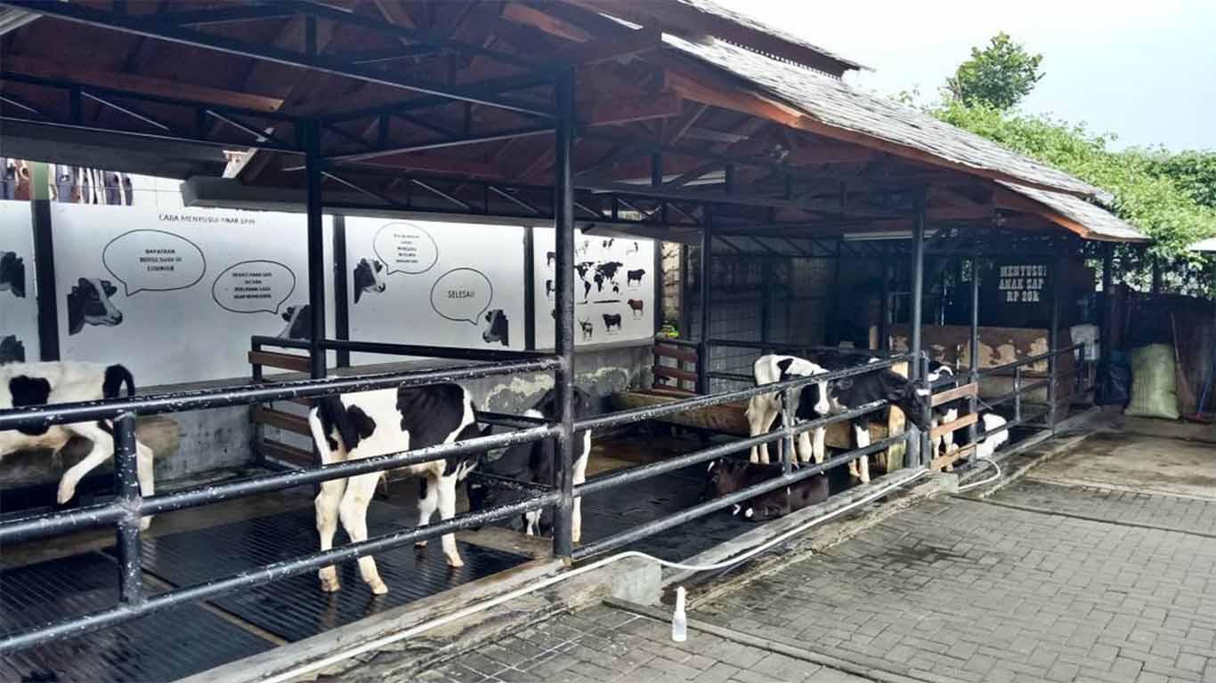 Tiket Masuk Farmhouse Lembang