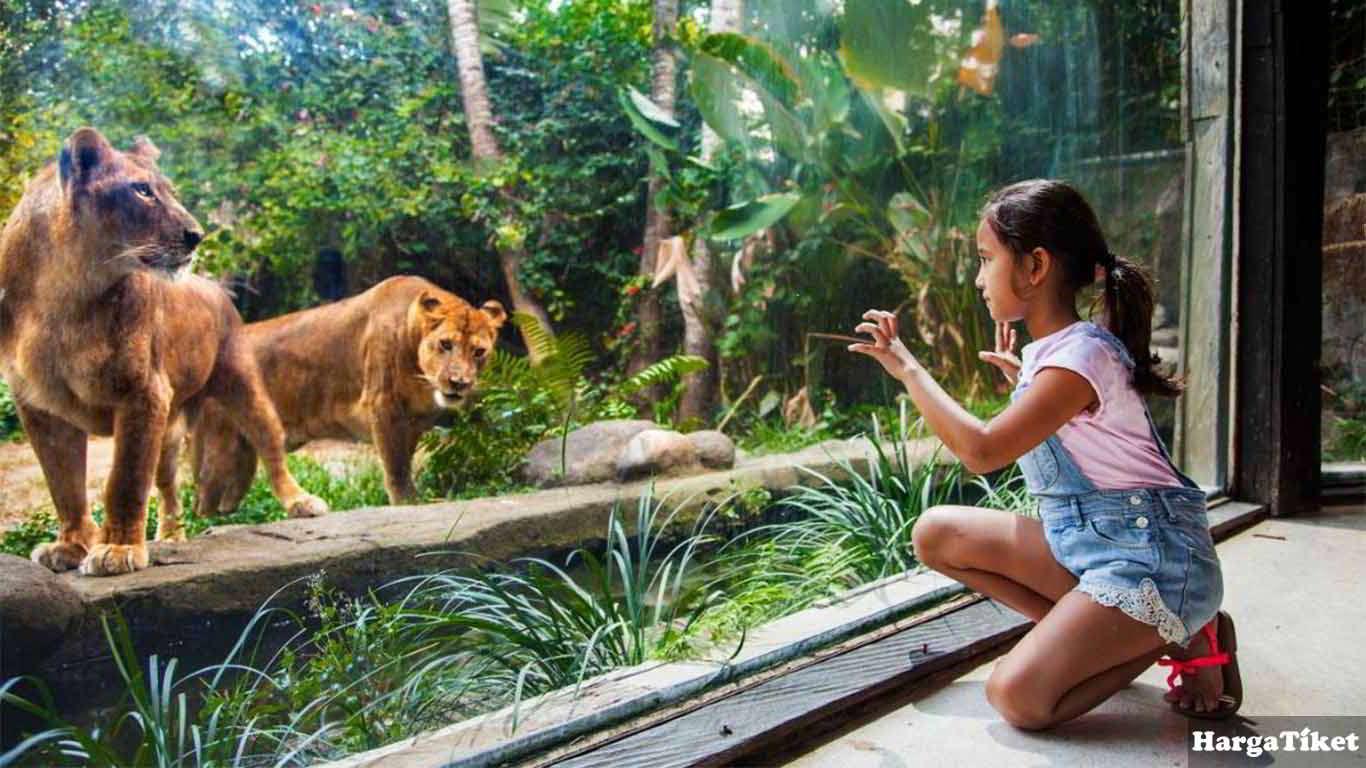 Harga Tiket Bali Zoo Park