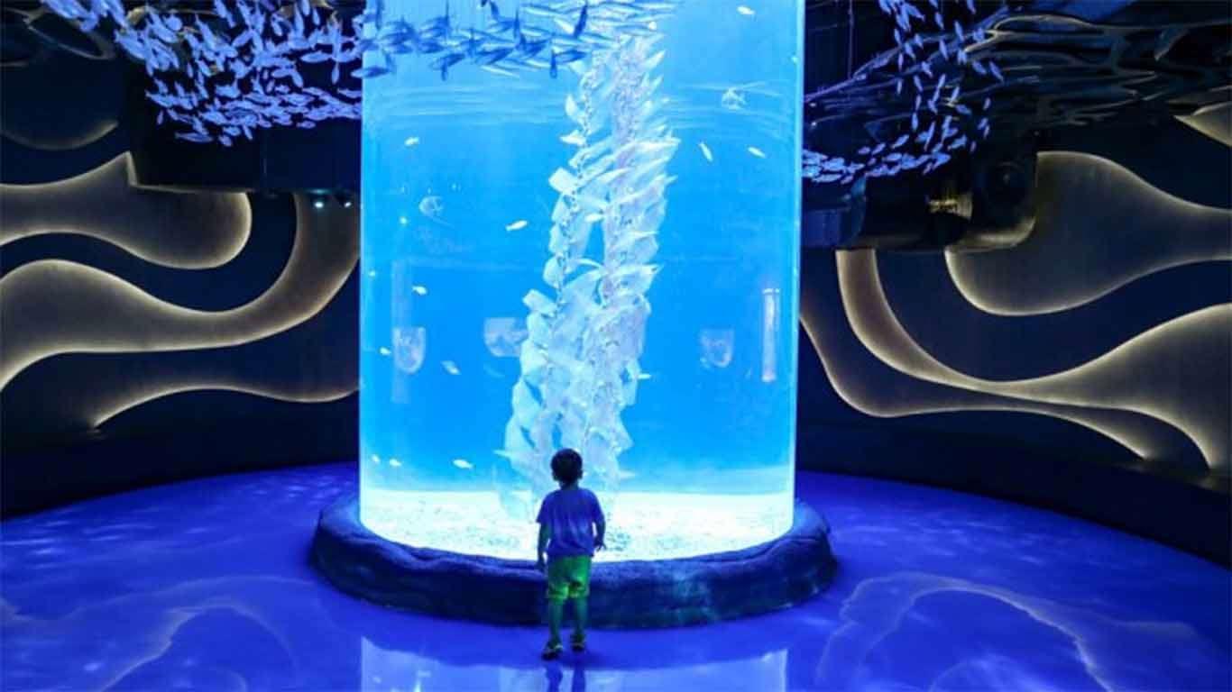 jakarta aquarium review