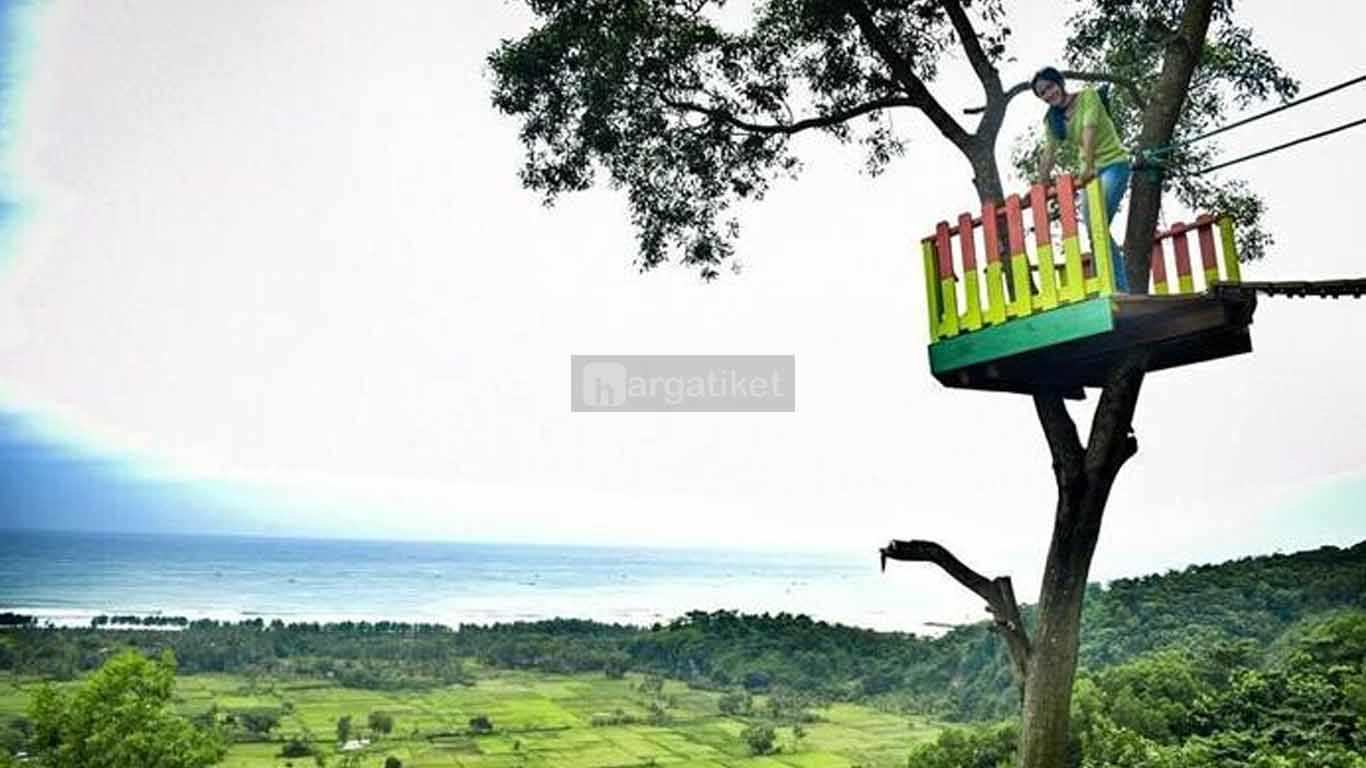 Rumah Pohon Puncak Selok