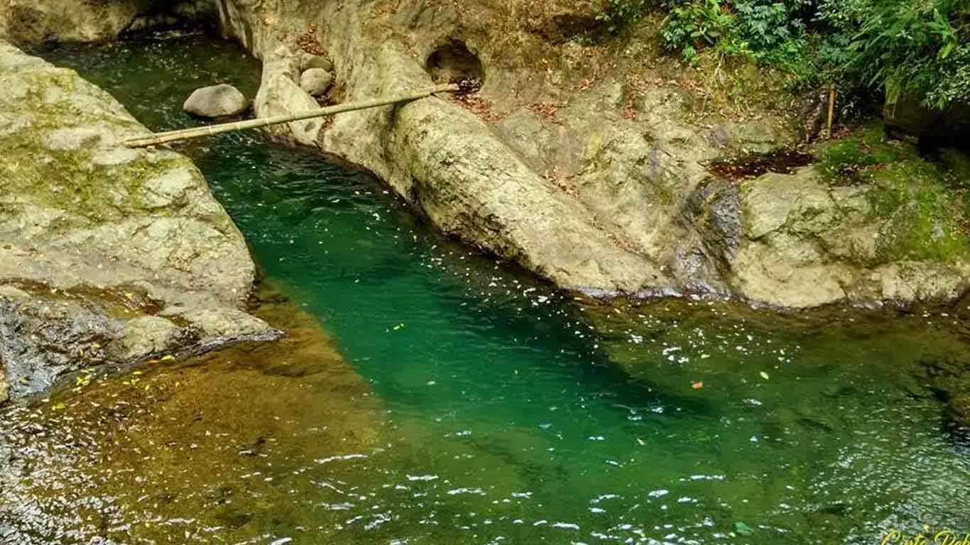 Welo River Petungkriyono