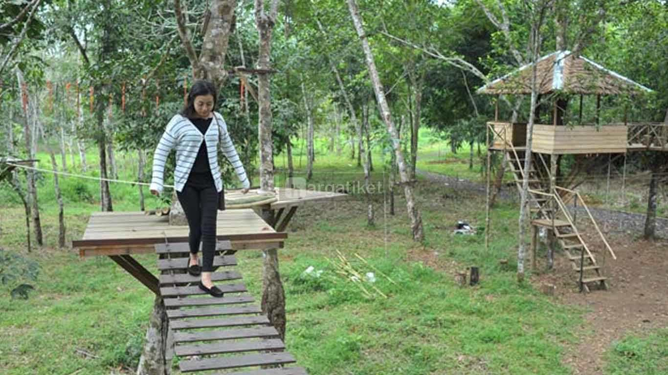 rumah pohon banjarbaru