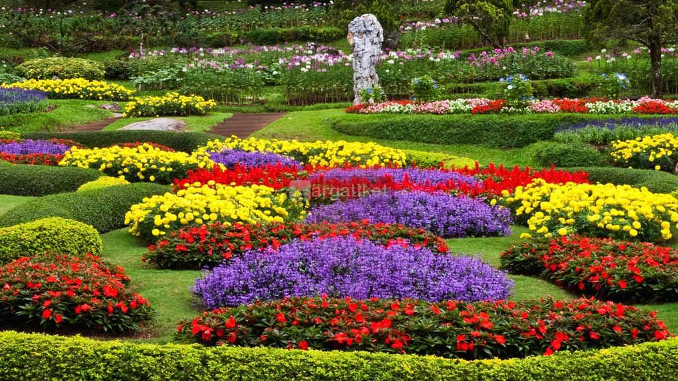 taman bunga cihideung cimahi