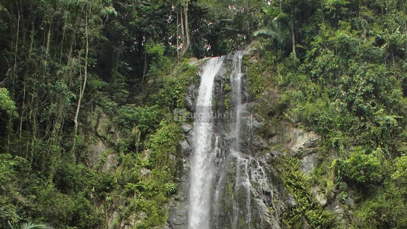 hutan pinus gorontalo