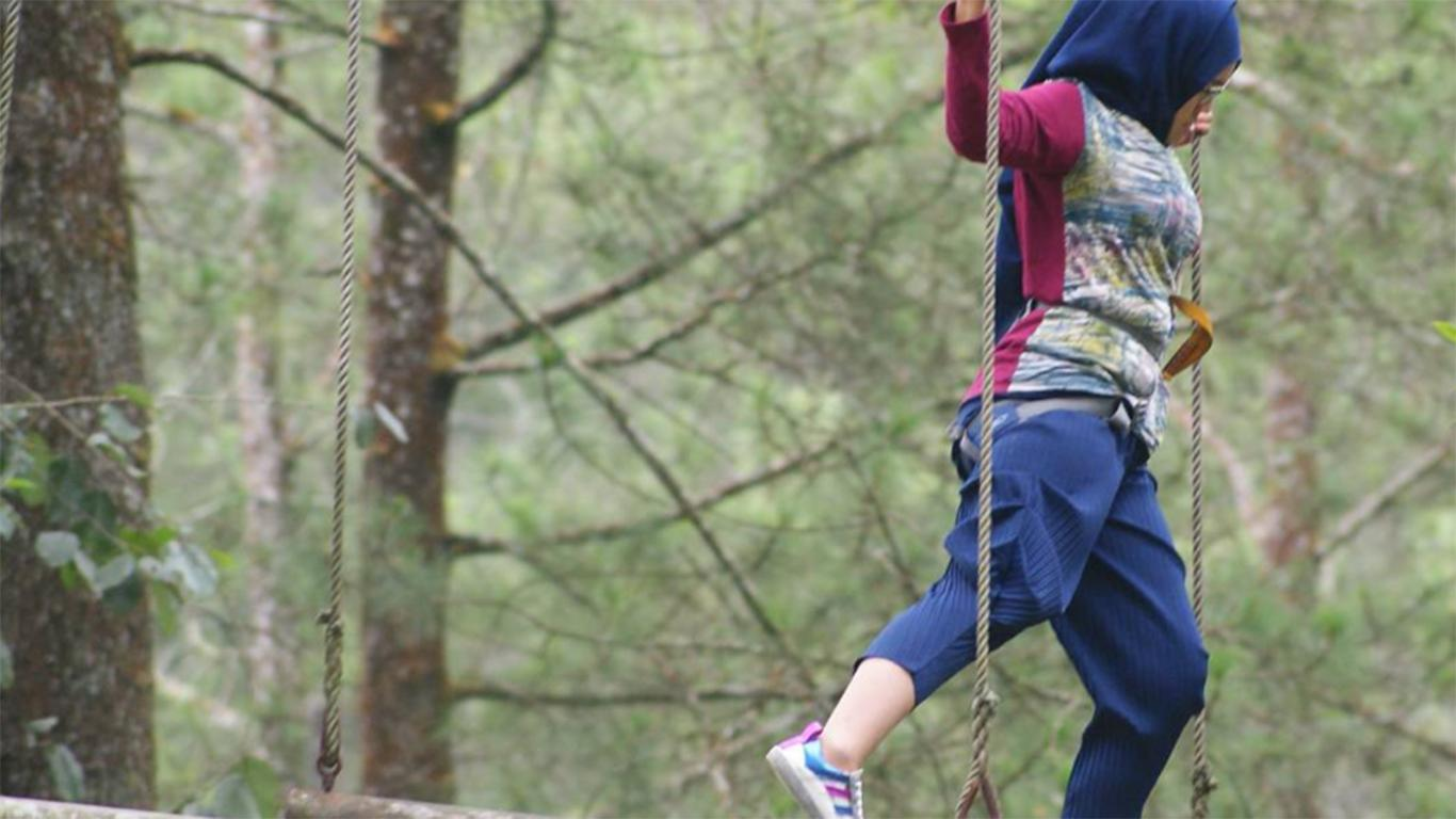 High Rope, Flying Fox, Low Rope