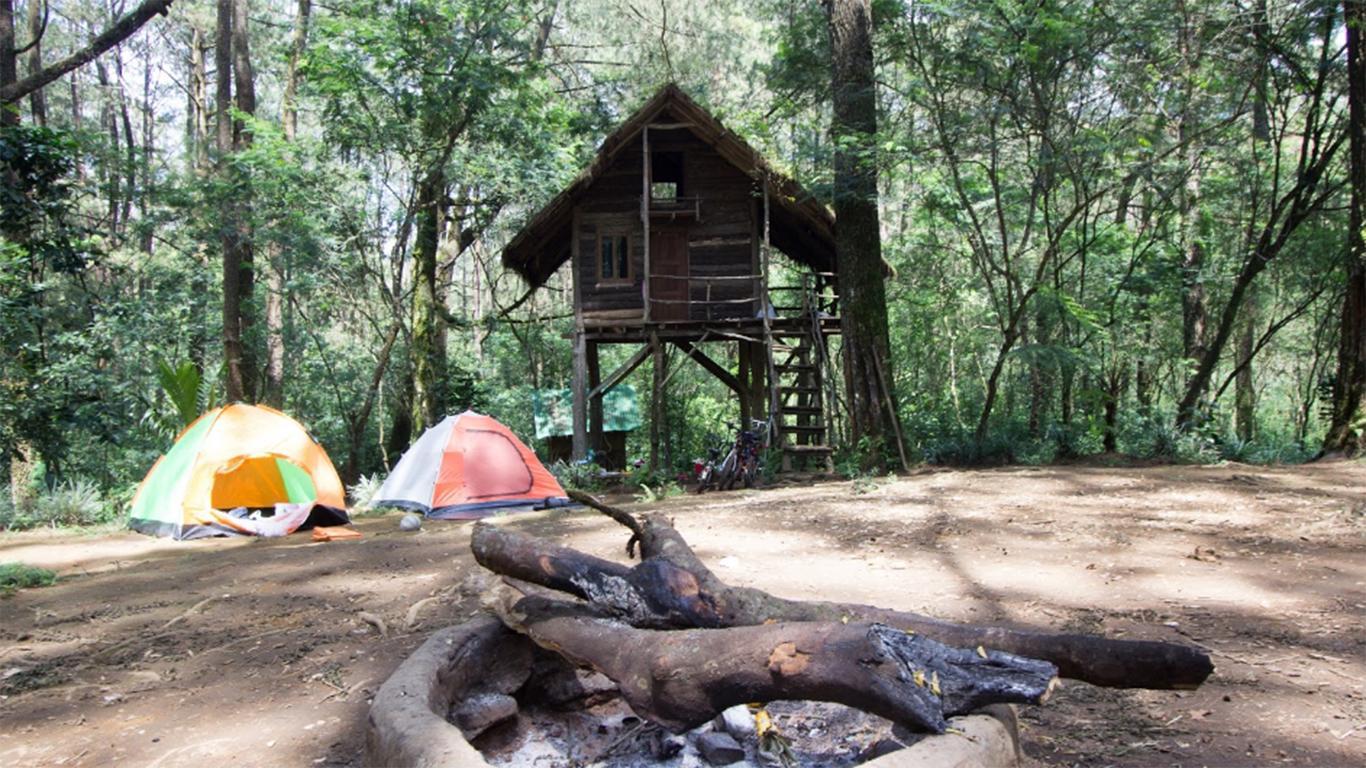Rumah Pohon Taman Buru Masigit Kareumbi