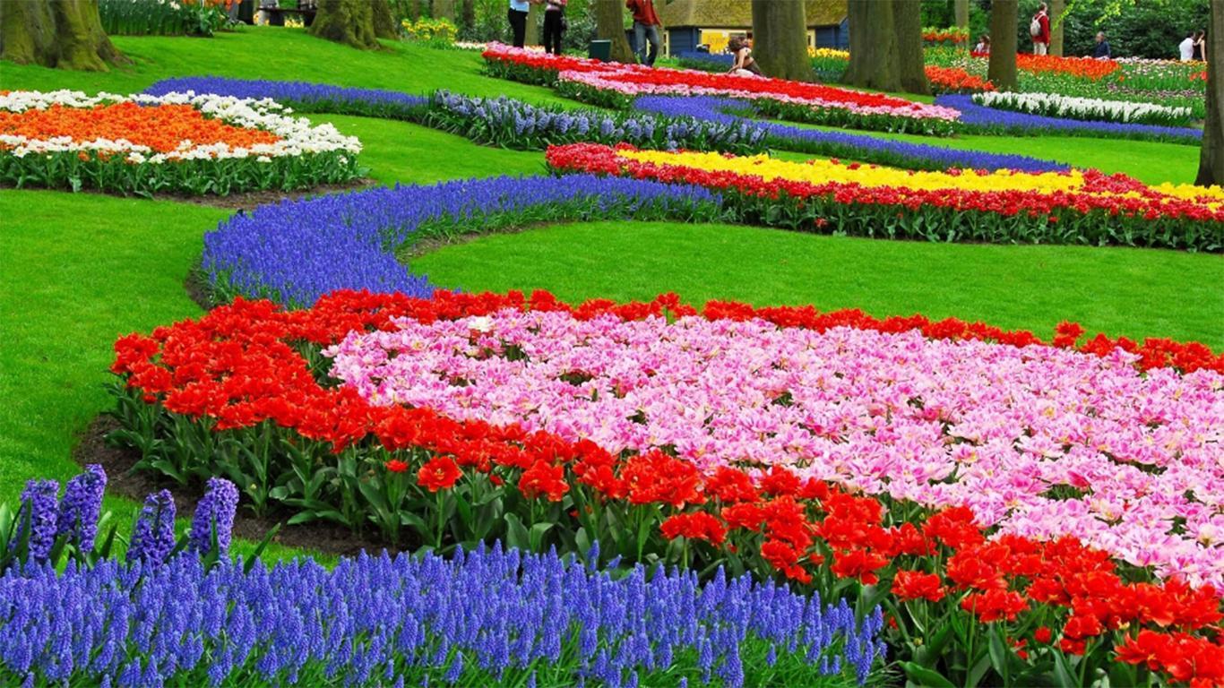 Harga Tiket Masuk Taman Bunga Cihideung