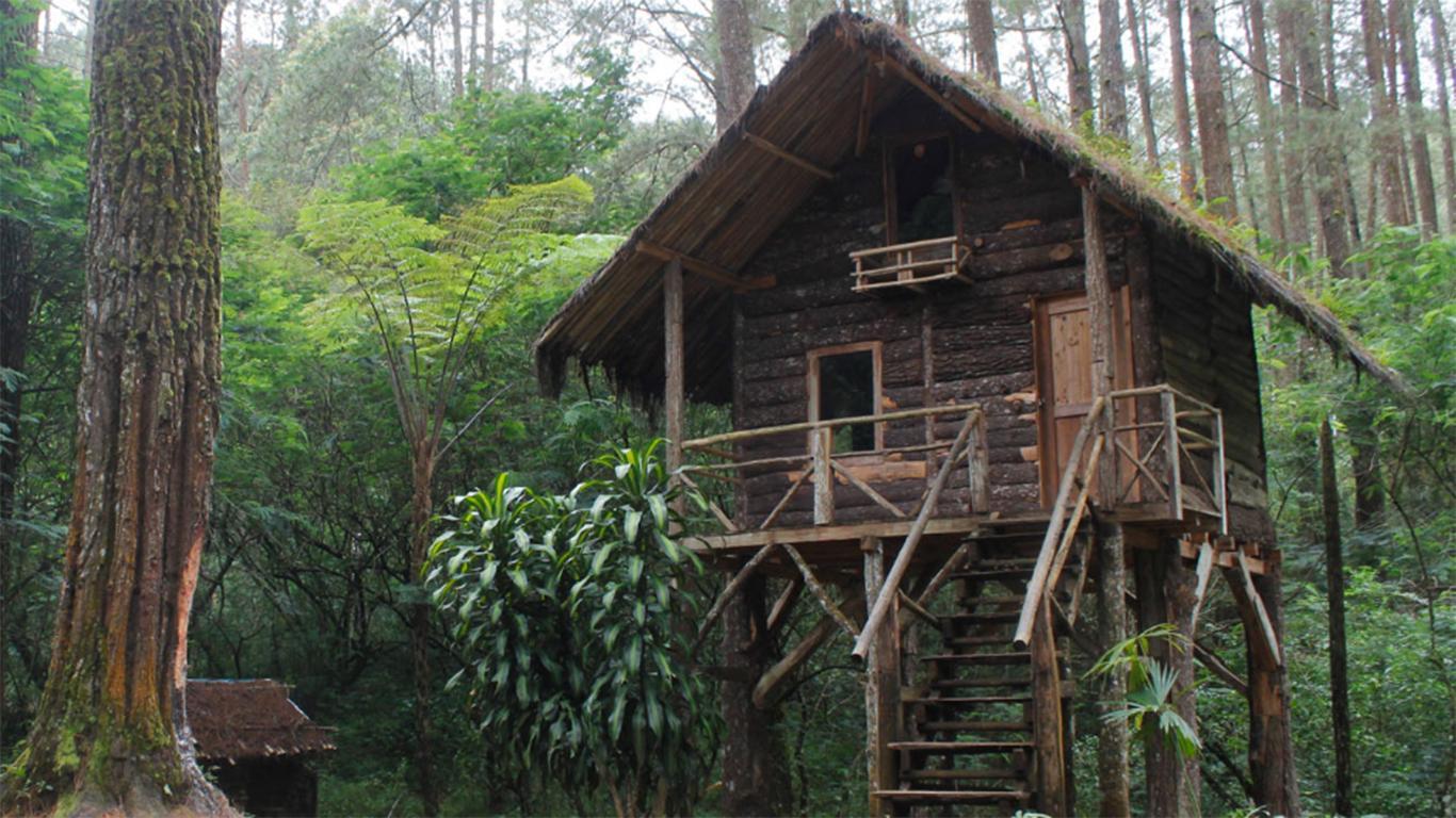 Harga Tiket Masuk Taman Buru Masigit Kareumbi