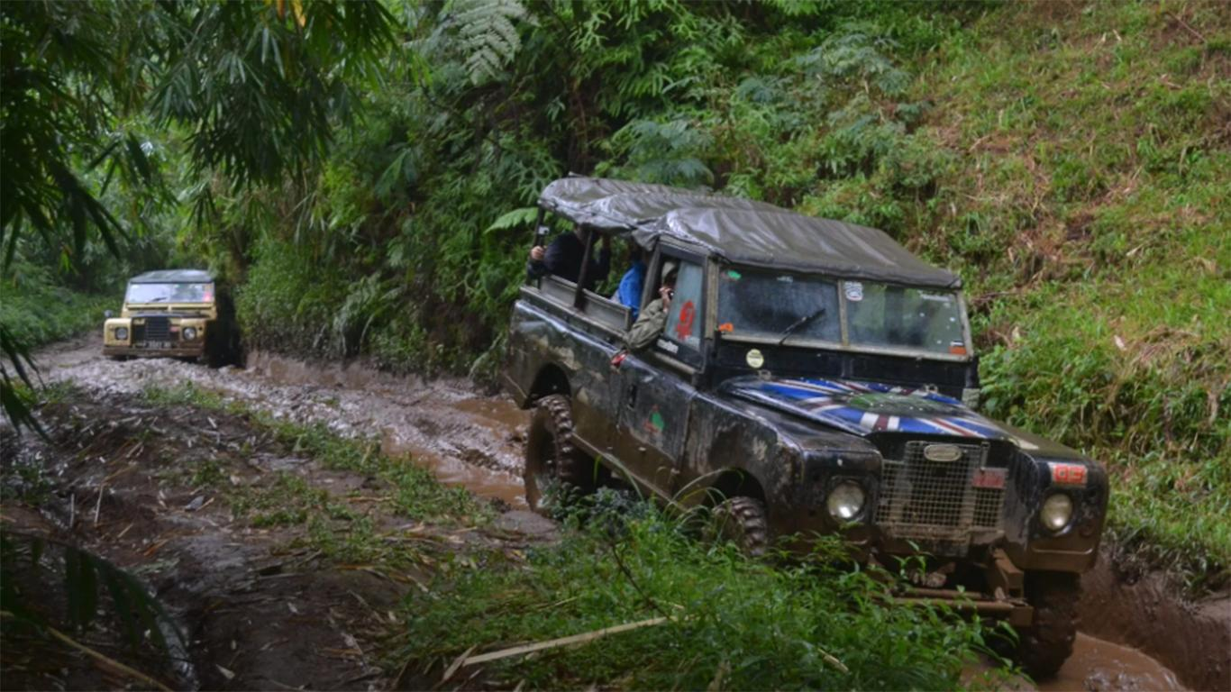 offroad Pine Forest Camp bandung
