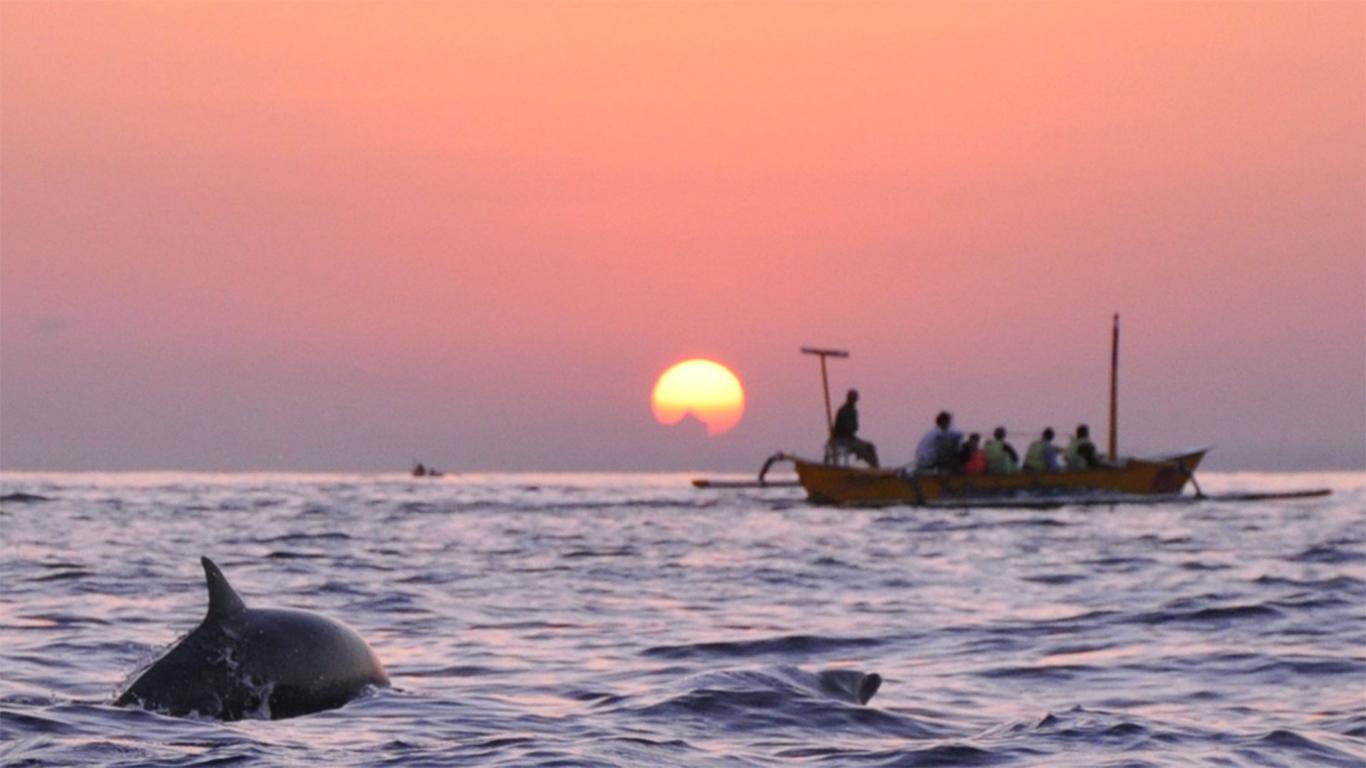 pantai lovina bali lumba lumba