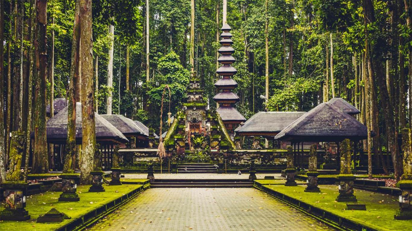 √ Penginapan + Harga Tiket Masuk Monkey Forest Ubud