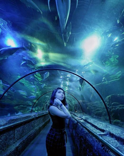 seaworld ancol promo