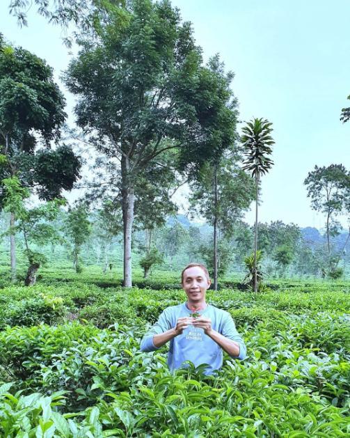 makalah kebun teh wonosari malang