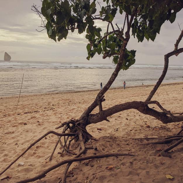 sejarah pantai tamban
