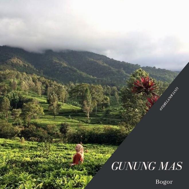 Gunung Mas Puncak: Review Wisata & Harga Tiket (2021
